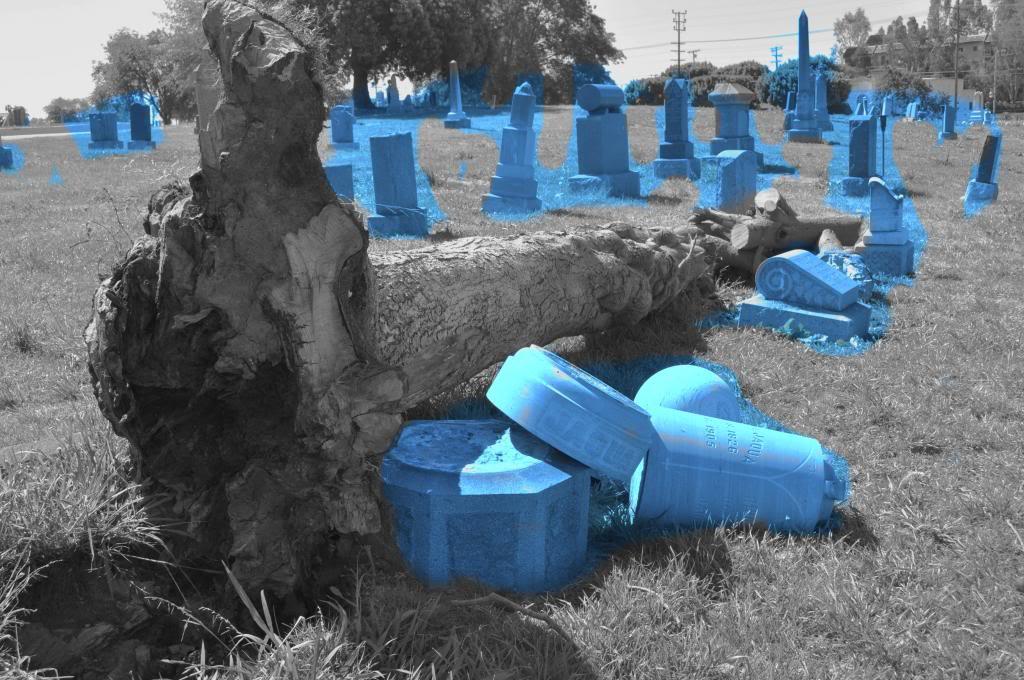Cemetery, 2007